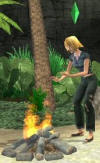sims 2 castaway wii how to get married