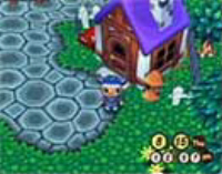 A screenshot of your house in Animal Crossing