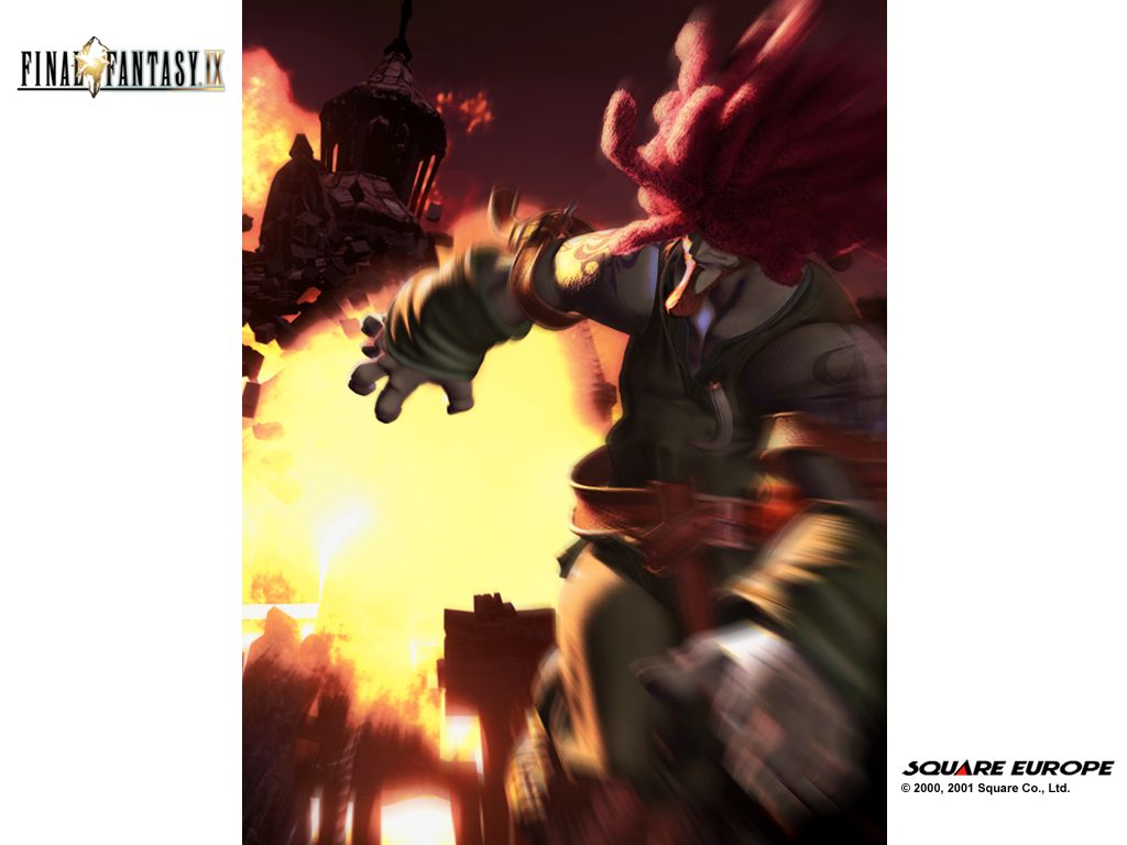 FF9 Character Names Amarant-final-fantasy-ix-wallpaper