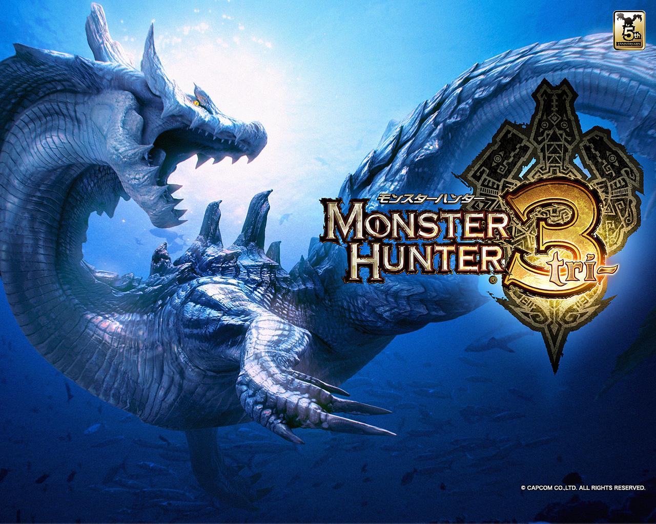 Monster Hunter Tri wallpaper