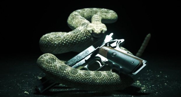Hitman 5 logo of Absolution and snakes
