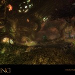 Kingdoms Of Amalur Reckoning Fae Hollows Wallpaper