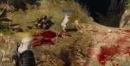 The Witcher 3 Easter Eggs